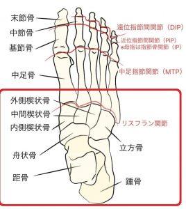 足根骨調整をします